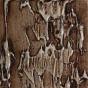 laccato 82DA ardesia argento - +380,10€