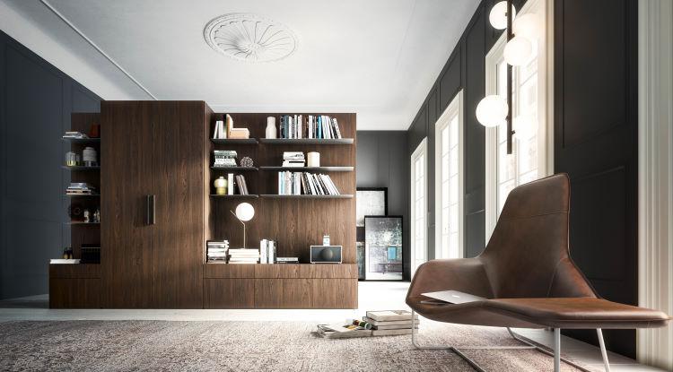 Armadio divisorio in soggiorno con spazio per libri e tv Wide